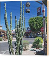 Old Town Cactus Wood Print
