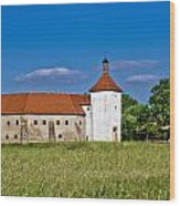 Old Town Fortress In Durdevac Croatia Wood Print