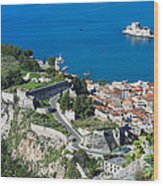 Old Town Nafplio And Ruins Wood Print