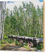 Old Tramway In Canyon City  Miles Canyon Trail Near Whitehorse-yk Wood Print