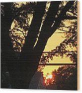 Old Tree And Sunset Wood Print