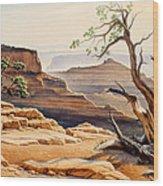 Old Tree At The Canyon Wood Print