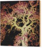Old Tree New Bark Wood Print