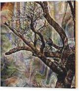 Old Tree Photoart Wood Print