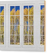 Old Triple16 Pane White Window Colorful Autumn Aspen Forest View Wood Print