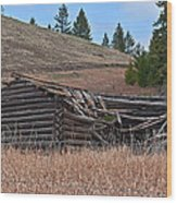 Old Turn Of The Century Log Cabin Homestead Art Prints Wood Print
