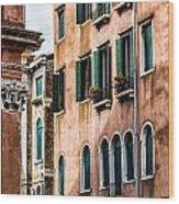 Old Venetian Walls. Italy Wood Print