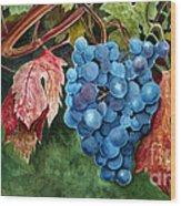Old Vine Zinfandel Wood Print