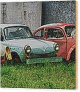 Old Volks Home Wood Print