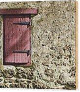 Old Wall And Door Wood Print