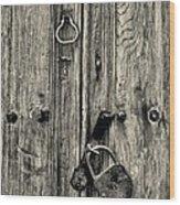 Old Weathered Door Wood Print