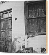 old weathered wooden door entrance to abandoned house 18 with window and cracked stucco walls in Los Banquitos Tenerife Canary Islands Spain Wood Print