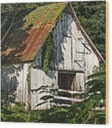 Old Whitewashed Barn In Tennessee Wood Print by Debbie Karnes