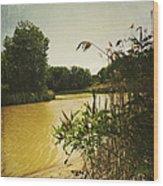 Old Woman Creek  Wood Print