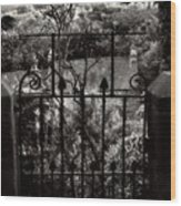 Olde Victorian Gate Leading To A Secret Garden - Peak District - England Wood Print