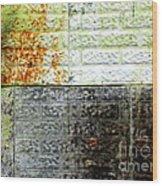 Older Days Wood Print by France Laliberte