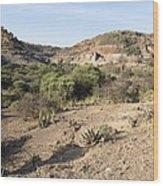 Olduvai Gorge Landscape, Tanzania Wood Print