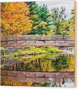 Ole Bull State Park Paint Wood Print