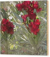 Oleander Blooms - A Touch Of Red Wood Print