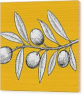 Olive Branch Engraving Style Vector Wood Print