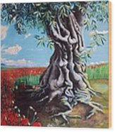 Olive Tree In A Sea Of Poppies Wood Print