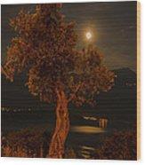 Olive Tree Under Moonlight Wood Print