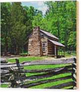 Oliver Cabin 1820s Wood Print by David Lee Thompson