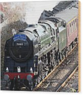 Oliver Cromwell Arrives In Lincoln Wood Print