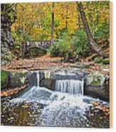 Olmstead Falls Ohio Wood Print