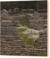 Olympia Ruins And Wild Flowers   #9684 Wood Print