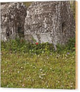 Olympia Ruins And Wild Flowers   #9821 Wood Print