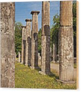 Olympia Ruins Wood Print