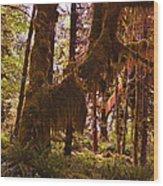 Olympic National Park - Rainforest Wood Print