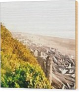 Olympic Peninsula Driftwood Wood Print