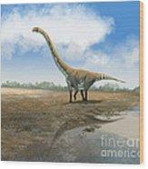 Omeisaurus Tianfuensis, An Euhelopus Wood Print by Roman Garcia Mora