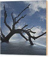 On A Misty Morning Wood Print by Debra and Dave Vanderlaan
