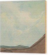 On A Mountain 2009 Wood Print