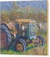 On A Westland Farm  Wood Print