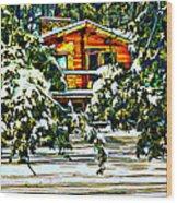 On A Winter Day Wood Print by Steve Harrington
