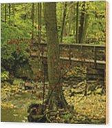 On An Autumn Walk Wood Print