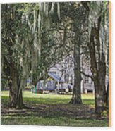 On Destrehan Plantation Wood Print