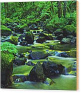 On Golden Waters  Wood Print