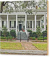 On Guard In New Orleans Wood Print