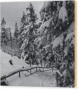 on the Achtermann, Harz Wood Print