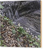 On The Banks Of The Rapids Wood Print