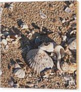 On The Beach 03 Wood Print