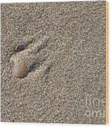 Shell On The Beach Wood Print