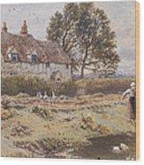 On The Common Hambledon Surrey Wood Print