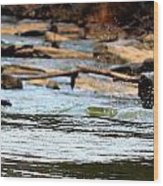 On The Creek Wood Print