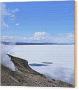 On The Edge Of Lake Yellowstone Wood Print